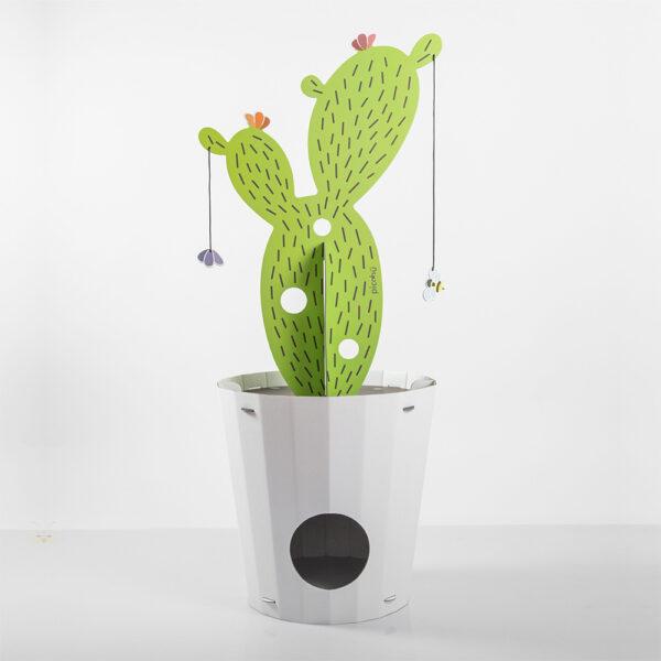 cuccia design cactus